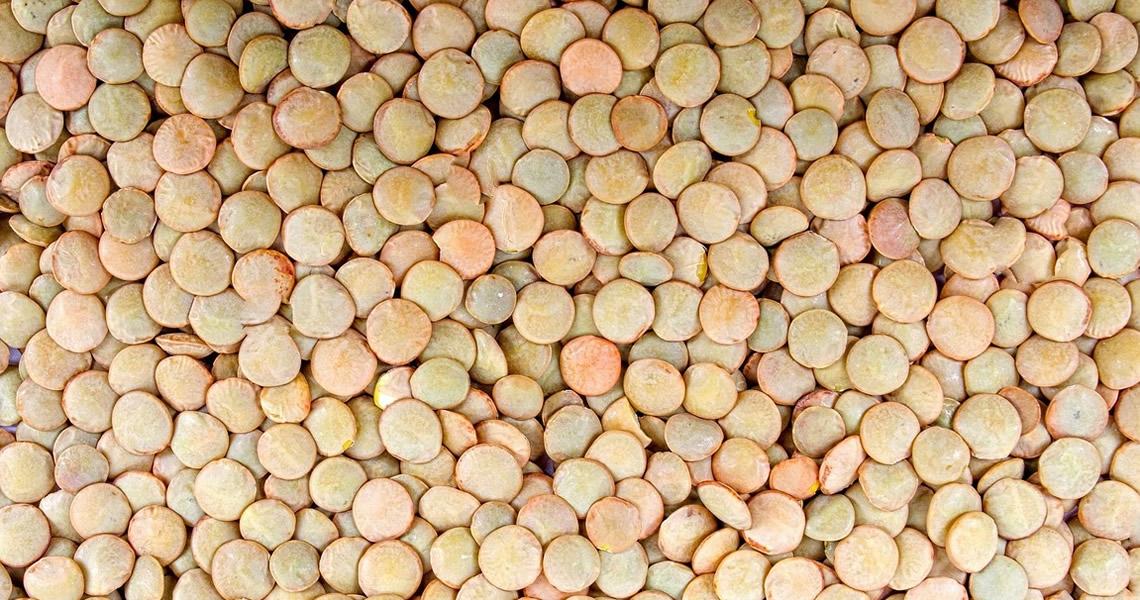 legumi-lenticchie